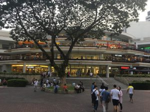 こちらのアヤラセンターは百貨店とショッピングモールが合わさったくらいの大きさ!